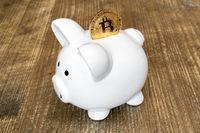 Saving Bitcoins in piggy bank