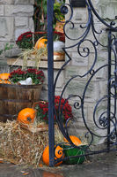 House decorated with pumpkins and fall leaves for Thanksgiving day and Halloween