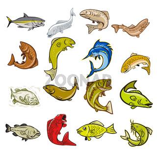 Marine Life Cartoon Set