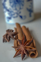 Chinese star anise and cinnamom