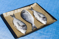 fish on a baking tray