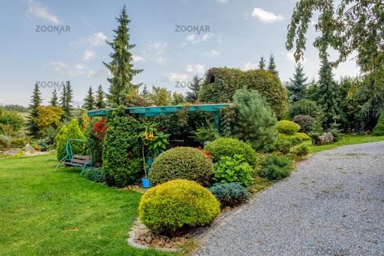 autumn in garden. Fall concept gardening