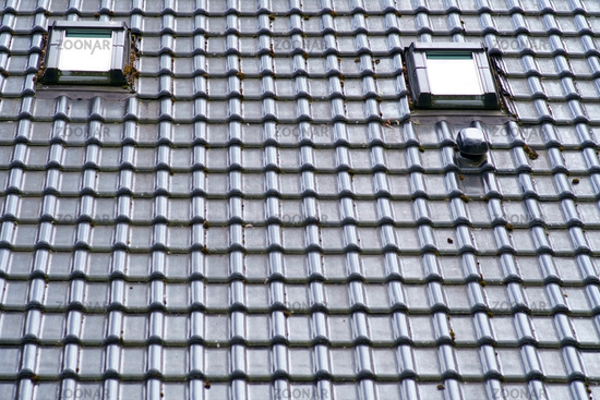 Roof with roof shingles and windows