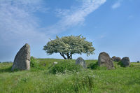 Megalithic Tomb of Nobbin on Ruegen,baltic sea,Mecklenburg western Pomerania,Germany