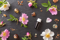 Essential oil bottles with dog rose flowers