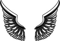 Wings illustration isolated on white background. Design element for logo