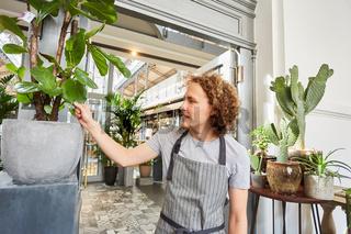 Mann als Florist in Ausbildung mit Grünpflanze