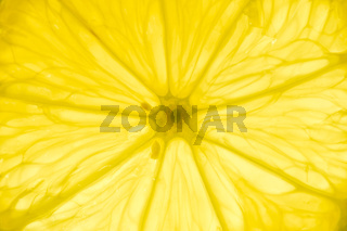 Lemon slice backlit close-up view