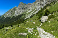Hiking trail to the Alp of Solalex at the foot of the Diablerets massiv, Bex, Vaud, Switzerland