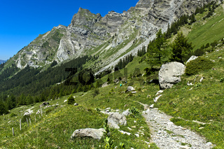 Wanderweg zur Alp Solalex am Fuss des Diableretmassivs, Bex, Waadt, Schweiz