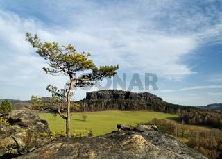 Elbsandsteingebirge - Ausblick vom Berg 'Quirl'