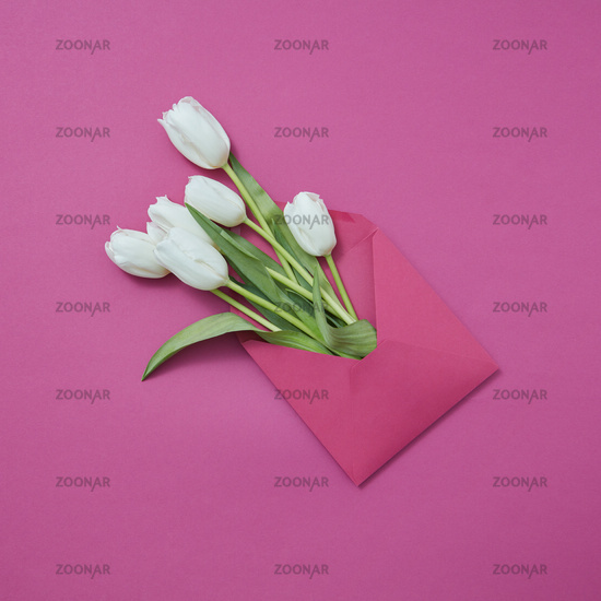 Handmade envelope with fresh white tulips on a magenta background.