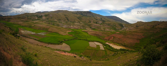 Landscape with the rice fields at Ambalavao Fianarantsoa ,Madagascar