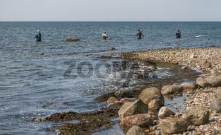 Angler bei Klein Zicker