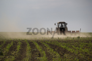 Tractor cultivating land on a field at summer day