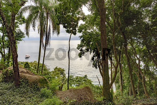 View to the bay of Ilha Grande through the rain forest vegetation