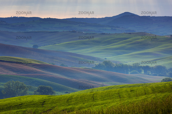 Tuscany foggy morning hill landscape