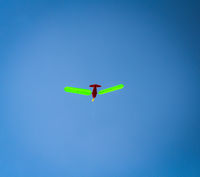 a flying kite in the sky, children and adults enjoy this leisure time activity in autumn