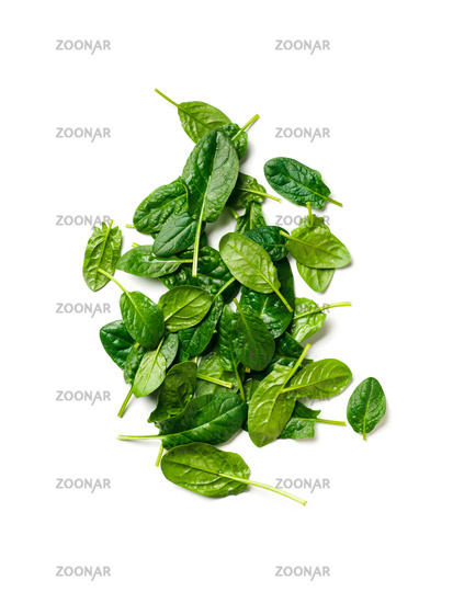 Heap of baby spinach isolated