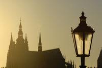 St. Vitus Cathedral in Prague