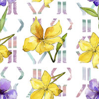 Watercolor blue and yellow flax flowers. Floral botanical flower. Seamless background pattern.