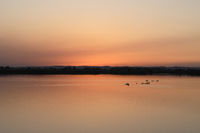 beautiful orange sunset over a lake * Burgenland, Österreich *