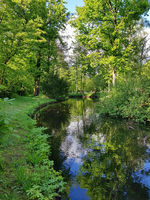 The Panke stream in the Castle park in Pankow