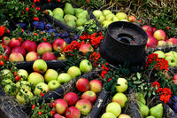 Wagon wheel as apple decoration