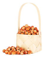 Hazelnuts In Wooden Basket