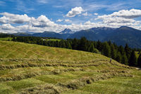 South Tyrol - Hay harvest with view to the Peitlerkofel