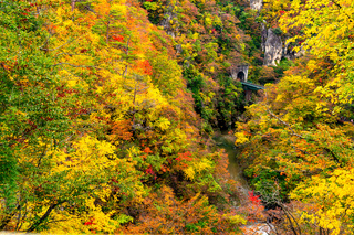 Beautiful autumn color at the Naruko Gorge