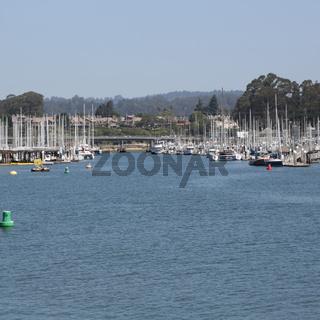 santa cruz harbor tourist destination