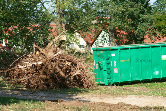 Stacked and sawn branches after a storm next to a container