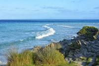 Sardinia La Pelosa 2