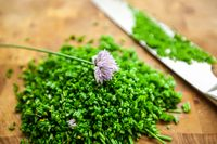 Fresh chives on a wooden cutting board, selective focus