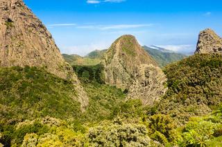 Die beruehmten verwitterten Vulkanschlote im Garajonay Nationalpark, La Gomera, Spanien