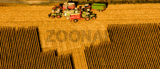 Maisernte auf einem Feld bei Haltern. Landwirtschaft