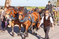 Warngau, Germany, Bavaria 27.10.2019: Rider at the Leonhardifahrt Warngau