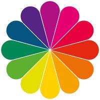 Farbkreis als Blume mit ausgewählten Farben
