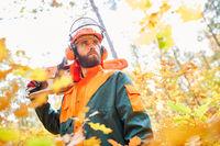 Waldarbeiter als Holzfäller mit Motorsäge im Wald