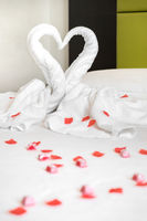 White two towel swans on the bed