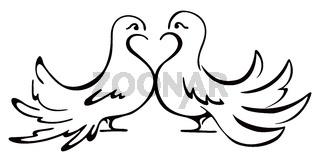Beloved couple doves on illustration