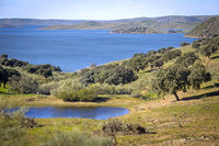 View at the Lake, riverside of the storage reservoir Embalse de La Serena, Spain