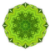Green eight-pointed mandala