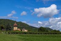 Blick auf den Geilweilerhof