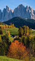 Autumn evening Santa Magdalena famous Italy Dolomites village surroundings view in front of the Geisler or Odle Dolomites mountain rocks. Picturesque traveling and countryside beauty concept scene.