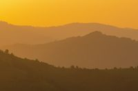 golden sunset in summer
