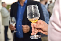 Mature people holding a drink glass during a business reception with unfocused background.