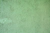 the cement-like structure of a homogeneous wall of green color