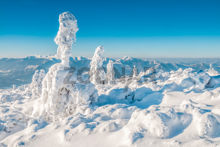 Idyllic winter in mountains